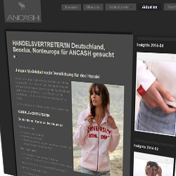 Bild Homepage ANCASH Hamburg Job Karriere